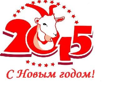 novogodniye_tury_2015_pod_kievom_www.vog.com.ua.jpg